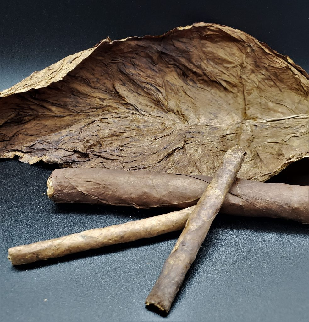 Fronto grabba leaf best quality